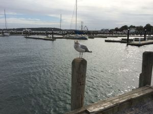 Greenport, Long Island