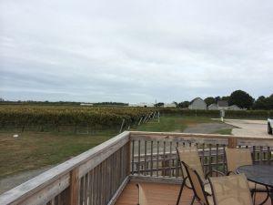 Outside of Pindar Winery, Long Island